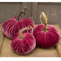 Plush Pumpkins made from pomegranate velvet.  Shabby Chic Couture