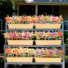 Colorful pinwheel escort cards // Gertrude and Mabel Photography // http://www.theknot.com/weddings/album/a-casual-garden-wedding-in-rutherford-ca-122286