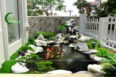 Thi công bể koi uy tín sân vườn biệt thự , thi cong be koi uy tin san vuon,  Bể cá, hồ cá koi ,  bể koi sân vườn, san vuon be koi, sân vườn biệt thự