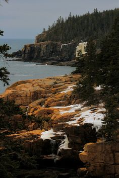 Maine Coast-Camping spot for next summer! :)