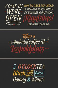 Abelina calligraphic script font for display use.