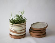 Desert Planter with Saucer by Helen Levi