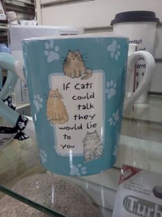 if cats could talk mug | http://www.thisislmao.com/image/335/if_cats_could_talk_mug/