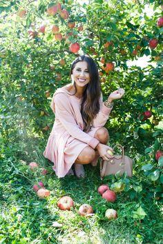 Vermont Apple Picking