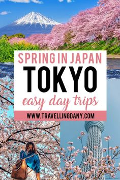 Japan Travel Guide, Best Travel Guides, Tokyo Travel, Asia Travel, Trip To Japan, Day Trips From Tokyo, Best Places To Travel, Cool Places To Visit, Places To Go
