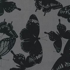 Jennifer Sampou - Black and White - Butterfly Netting in Charcoal