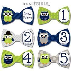 Bowtie Monthly Onesie Stickers with Owls in Navy Blue, Lime Green and Gray Photo Props for Baby Boys - 18 Sticker Set