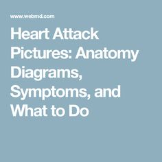 81 Best Webmd Images In 2019 Cardiovascular Disease Health Tips
