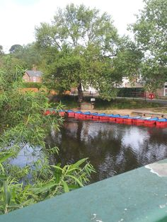 Perfect day for some riverboat action in Morpeth