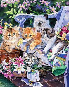 <3 LOOK AT THE KITTIES!! <3