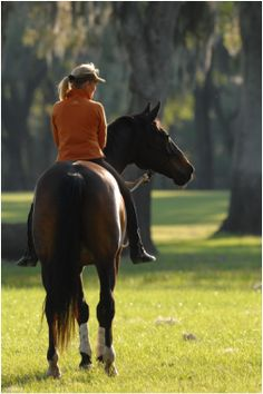 Does you horse feel safer with the herd?