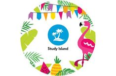 4 Ways to Keep Students Learning This Summer with Study Island Study Island, Math Skills, Student Learning, Elementary Schools, Students, Summer, Books, Summer Time, Libros