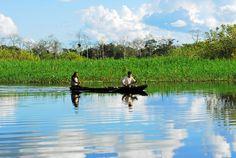 Pacaya Samiria Reserve -- how I long to go back to Peru....