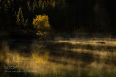 First light by RetoSavoca. Please Like http://fb.me/go4photos and Follow @go4fotos Thank You. :-)