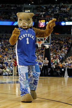 1000+ images about Kentucky Wildcats Mascot on Pinterest ...