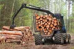 How Europe's Good Environmental Intentions are Inadvertently Destroying America's Forests - Extremely vulnerable natural forests in the southeast are being felled to send biomass fuel to Europe. Timber Companies, Forest Resources, Rich Kids Of Instagram, Cool Iphone 6 Cases, Earth News, Wood Pellets, Thing 1, Vegan Life, Natural Wonders