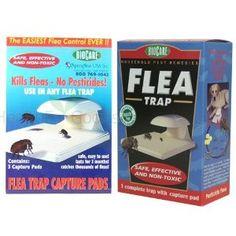 Flea Trap w/ 4 Capture Pads --- http://www.pinterest.com.tocool.in/3p
