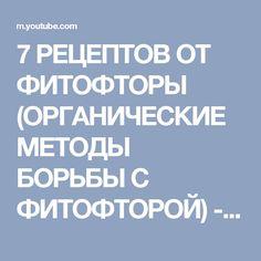 7 РЕЦЕПТОВ ОТ ФИТОФТОРЫ (ОРГАНИЧЕСКИЕ МЕТОДЫ БОРЬБЫ С ФИТОФТОРОЙ) - YouTube