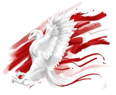 White and Red by ThunderboltFire on DeviantArt Hannah Tattoo, Dojo, Polish Tattoos, Eagle Wallpaper, Poland History, Patriotic Tattoos, Polish Language, Cute Love Wallpapers, Tatoo