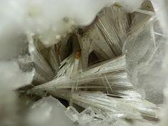 Rémondite-(Ce), Na3(Ce,La,Ca,Na,Sr)3(CO3) 5,  Mont Saint-Hilaire, Quebéc, Canada Taille=3 mm Copyright Stephan Wolfsried