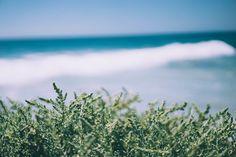 Ocean Coast - Photographer Herson Rodriguez