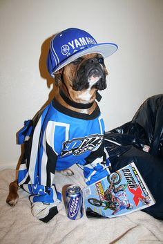 Dirt Bike Dog    Like, Repin, Follow :)
