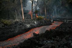 Kalapana, Hawaii  | Lava river Kalapana Hawaii | Amazing Life's Nature...