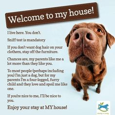 Family & friends PLEASE take note of this prior to coming to visit. #Furbaby house rules