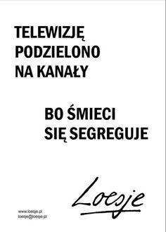 http://inkubatorkultury.szczecin.pl/site_media/uploads/img/tv_loesje.jpg