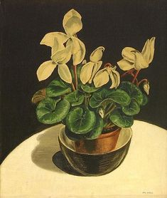 Rita Angus, Still Life with Cyclamens