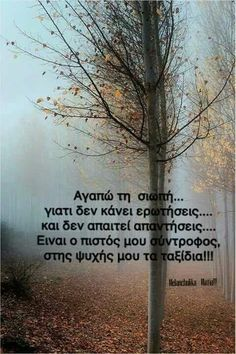 Love the silence. Cool Words, Wise Words, Woman Quotes, Life Quotes, Reality Of Life, Perfect People, Greek Quotes, Movie Quotes, Picture Quotes