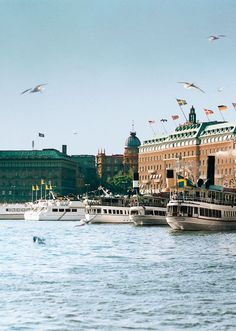 5 things you must do in Stockholm