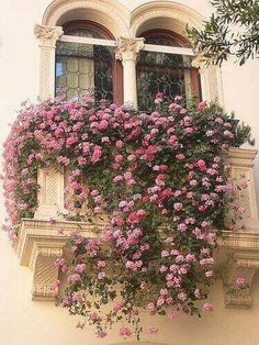 ~*~ old world balcony draped w/ lush fragrant profusion of pink flowers ~*~
