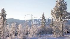 A group of people going cross country skiing in Jamtland, a mountainous district in norhtern Sweden HD Stock Footage Clip. Sun And Clouds, Winter Scenery, Best Stocks, Cross Country Skiing, Winter Beauty, Hd Video, Stock Footage, Sweden, Scandinavian