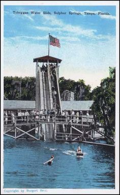 Vintage.... Sulphur Springs Slide in Tampa. Too bad it doesn't look like that anymore.