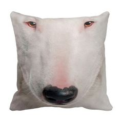 >>>This Deals          pillow pet  dog 33           pillow pet  dog 33 in each seller & make purchase online for cheap. Choose the best price and best promotion as you thing Secure Checkout you can trust Buy bestReview          pillow pet  dog 33 Review on the This website by click the butt...Cleck Hot Deals >>> http://www.zazzle.com/pillow_pet_dog_33-189623874019773184?rf=238627982471231924&zbar=1&tc=terrest