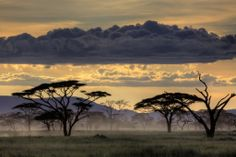 A beautiful landscape in the Serengeti, Tanzania, Africa. Photographer Amnon Eichelberg The United Republic of Tanzania is a country in East Africa bordered by… Sunset Photos, Nature Photos, Places To Travel, Places To See, Parque Natural, Serengeti National Park, Parc National, Beautiful Places In The World, Beautiful Things