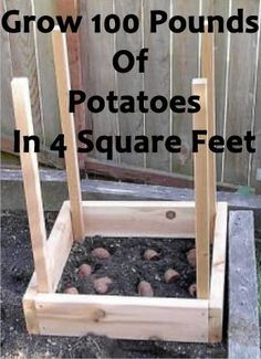 How To Grow 100 Pounds Of Potatoes In 4 Square Feet Instructions How to Install . How To Grow 100 Pounds Of Potatoes In 4 Square Feet Instructions How to Install a Dry Creek Bed Instructions Aspirin is th. Lawn And Garden, Garden Beds, Herb Garden, Box Garden, Garden Benches, Garden Spaces, Garden Hose, Organic Gardening, Gardening Tips