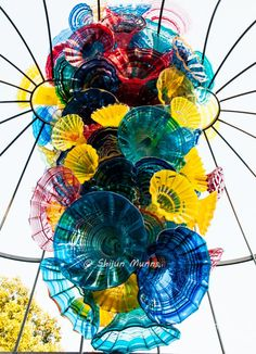 Fiori Boat and Niijima Floats - Chihuly Glass Art, 2016 Fiori Boat and Niijima Floats - Chihuly Glass Art, 2016 Fiori Boat. Chihuly Chandelier, Sculpture Art, Sculptures, Atlanta Botanical Garden, Botanical Gardens, Garden Animals, Dale Chihuly, Art Classroom, Cool Art