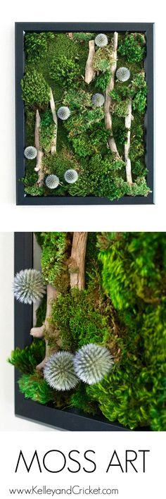 Wouldn't this gorgeous, life-like, and vibrant moss art look spectacular in you room or office? Best part of all is that this naturally preserved moss art work requires NO CARE at all! Moss Wall Art, Moss Art, Diy Wall Art, Air Plants, Indoor Plants, Indoor Gardening, Cactus Plants, Deco Restaurant, Moss Garden