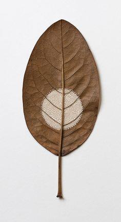 Crocheted Leaf Sculptures Susanna Bauer 9