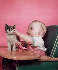 As if you didn't need a picture of a baby and a kitten with a pink backdrop today.  hautecatture:    (photographer unknown, 1950s)