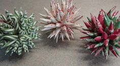 Video: How to make a Polish Star Ornament