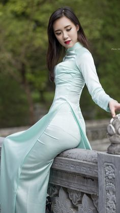 Áo dài Vietnamese traditional dress; fashion
