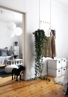 Home bedroom // My New Room, My Room, My Living Room, Home And Living, Home Interior Design, Interior And Exterior, Boho Deco, Bedroom Plants, Piece A Vivre