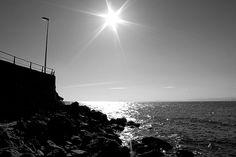 Uno de los rincones en las playas de Cullera...by BOTANIC CULLERA - jardín botánico, via Flickr