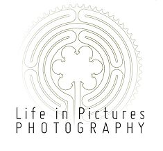 Life in Pictures Photographers, Pictures, Life, Photos, Photo Illustration, Resim