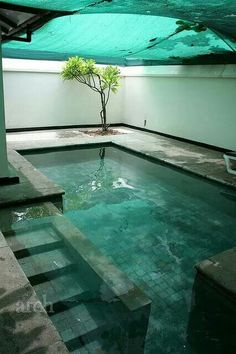 Everyone likes high-end swimming pool layouts, aren't they? Right here are some top checklist of high-end swimming pool image for your motivation. These dreamy swimming pool design suggestions will certainly transform your backyard into an exterior oasis.