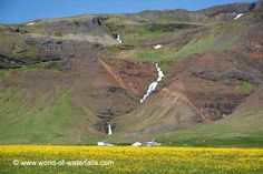 Gorgeous waterfall fronted by a just-as-gorgeous mat of wildflowers Snaefellsnes Peninsula, West Iceland West Iceland, Iceland Waterfalls, Wildflowers, Vacation Trips, Travel Destinations, Road Trip, Mountains, World, Road Trip Destinations