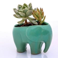 Hey #Santa is it too late to put this on our Christmas list? Neeeeed this little elephant planter by @clayliciousla #wishlist #Christmas #dearsanta #need #want #love #pinterest #etsy #etsyfinds #clay #planter #elephant #green #cute #fun #succulents #succulove #potplant #home #décor #style #igers #igdaily #instagood